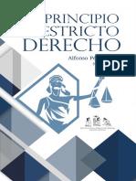 El Principio de Estricto Derecho (Versión Descargable)(1)