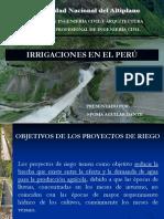 Irrigaciones en El Perú(Dante Poma Aguilar)