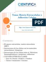 Clase 5 Matriz Extracelular y Adhesión Celular Beta (1)