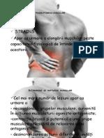 Curs VIII - Intinderi si rupturi musculare.pptx