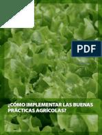 como-implementar-las-buenas-prácticas-agrícolas-.pdf