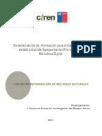 011 2010 Flores CIREN Informe Final