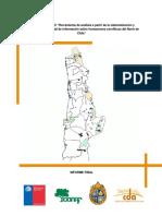031 2010 Osses PUC Informe Final