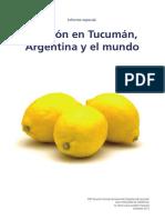 limón en tucumán