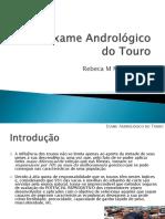 8-Exame Andrológico Do Touro