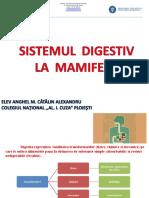 1. Sistemul Digestiv La Mamifere