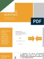 PLANES DE MUESTREO.pdf