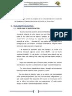 Las Lomas Informe Completo