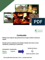 TPF Combustão