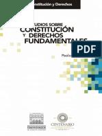 Estudios sobre Constitución y derechos fundamentales - Paolo Comanducci