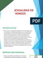 Parasexualidad en Hongos