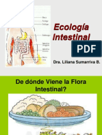Ecologia Intestinal