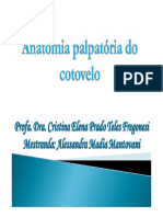 Anatomia Palpatória Do Cotovelo 2011