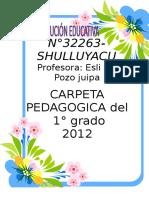 CARPETA PEDAGOGICA -3