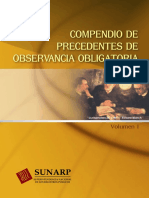 CPOO V1.pdf
