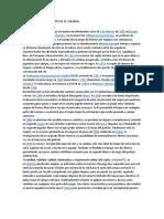 CONCEPTOS_Y_ANTECEDENTES_DE_EL_VOLEIBOL.docx