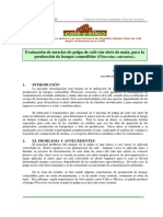 Evaluación de Mezclas de Pulpa de Café Con Olote de Maíz, Para La Producción de Hongos Comestibles (Pleurotus Ostreatus).
