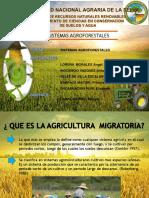 agricultura-migratoriaTERMINADO