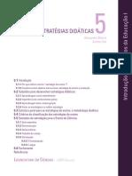Estrategias Didaticas _ Bizerra e Ursi
