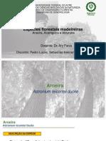 ESPECIE FLORESTAL MADEIREIRA