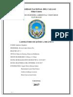 Informe Quimica Org Punto de Ebullicion[1]