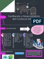 Facilitación y Financiamiento Del Comercio Exterior