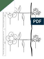Grupo a, B y C - Guía Partes de Una Planta - 4 Copias - Formato Carta