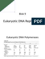 Eukariotik DNA Replication