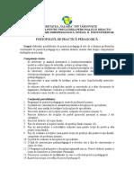 Continutul Portofoliului de Practica Pedagogica, Nivel II PU