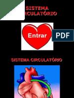 sistema_circulatrio.pdf
