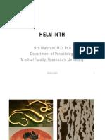 4 helminth_ppt.pdf