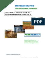 Guia_Presenteacion_Propuestas_A.pdf