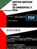 2 Fund Gestión Ambiental SIG