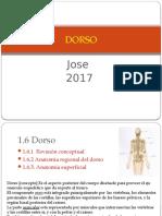 1.2.1 Pared Toracica Dorso