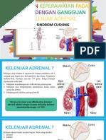 Asuhan Keperawatan Pada Klien Dengan Gangguan Kelenjar Adrenal