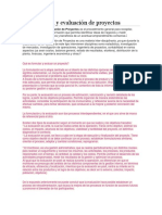 Formulación y Evaluación de Proyectos