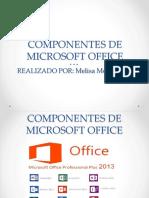 Componentes de Microsoft Office- Melisa
