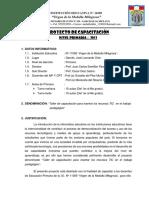 Proyectodecapacitacionaip Crt