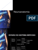 revisao-neuroanatomia