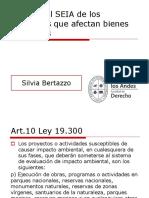 Silvia Bertazzo - Ingreso al SEIA de los proyectos que afectan bienes culturales.