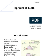 Development_of_teeth.ppt