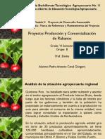 Proyecto de Desarrollo Sustentable Pedro