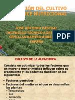 Alcachofa-nutricion Del Cultivo y Balance Nutricional