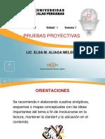 Semana i - Bases Teoricas de Las Pruebas Proyectivas (1)