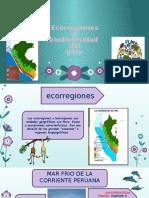 ecologia-diapo