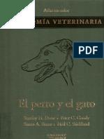 Atlas a Color Anatomia Veterinaria Perro y Gato - Stanley Done y Otros