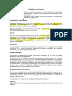 Yacimientos-Metalicos-1
