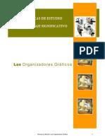 Organizadores_Graficos (1)