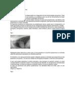 PRACTICA Word 2013_Radiología Pulmonar