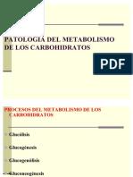 45274988-Patologia-Del-Metabolismo-de-Los-Carbohidratos.pdf